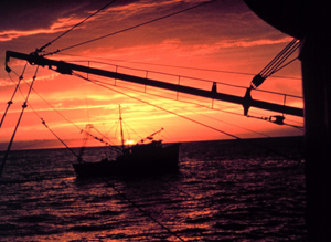 ACE Basin National Estuarine Research Reserve. Shrimpers grace a St. Helena Sound sunset.